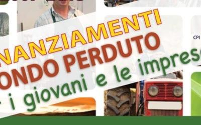 Finanziamenti per giovani e imprese: un incontro a Campi Salentina presso il Centro per l'Impiego