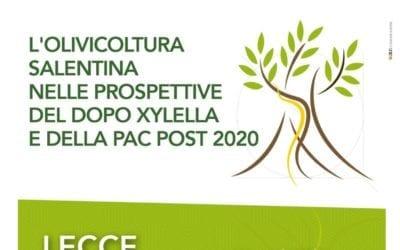 L'olivicultura salentina nelle prospettive del dopo xylella e della PAC post 2020
