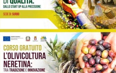 Corsi gratuiti sull'olivicoltura