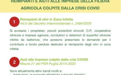 Avvisi Pubblici della Regione Puglia